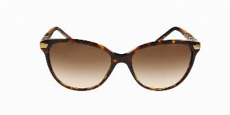 Burberry BE4216 300213 Dark Havana 57